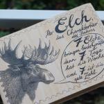 Der Elch, das Charaktertier des Jahres